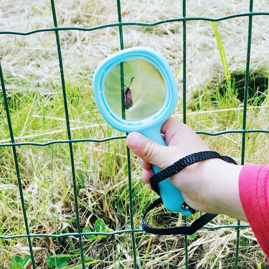 chasse au trésor okaasan-leblog